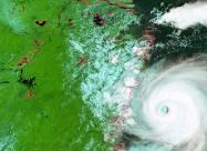 ВИДЕО. Самые мощные тайфуны, снятые на камеру