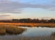 В Днепропетровской области из-за жары гибнет рыба