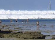 ВІДЕО. Історія очевидців цунамі 2004 року в Таїланді