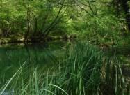 У Криму пересихають річки та водосховища