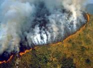 Бразилия: чрезвычайная ситуация из-за пожаров