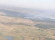В Херсонской области локализован лесной пожар
