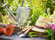 Місячний календар городника і садівника на жовтень 2020 року