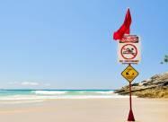 У Світовому океані створюються вбивчі хвилі тепла