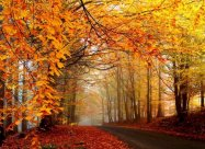 Погодные приметы на 20 октября