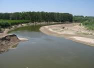 В Україні міліють річки, в них зникає риба