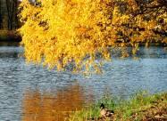 Погодні прикмети на 22 жовтня
