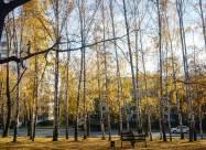 Погодні прикмети на 28 жовтня