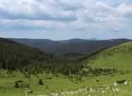 В Україні з'явиться новий національний парк у Карпатах