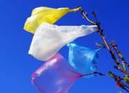 В Україні знизиться рівень засмічення після заборони пластикових пакетів