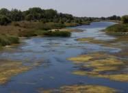 В Украине оказалась под угрозой исчезновения одна из чистейших рек Европы