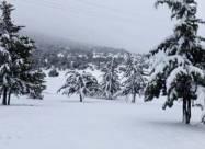 Сахара покрилася снігом