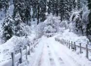 Погодные приметы на 15 января