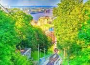 Киев занял 100-е место в рейтинге самых зеленых городов мира