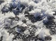 На Волыни зафиксировали уникальное естественное явление - цветы из льда