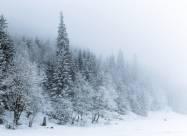 Погодні прикмети на 24 січня