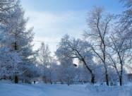 Погодні прикмети на 26 січня