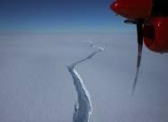 Огромный айсберг размером с полтора Киева откололся от шельфового ледника в Антарктиде
