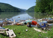 Рекордну кількість несанкціонованих сміттєзвалищ виявили на Закарпатті біля берегів річок