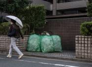 Бактерии могут производить ванилин из пластиковых отходов