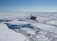 Екологи подали позов до Норвегії через освоєння шельфу Арктики