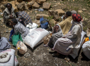 41 млн человек подвергаются опасности голода
