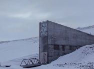 Норвежская фирма создает хранилище «Судного дня» для музыки