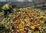 2,5 млрд т продуктов попадают в мусор ежегодно