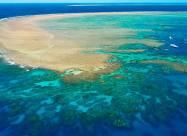 Большому Барьерному рифу больше не угрожает опасность