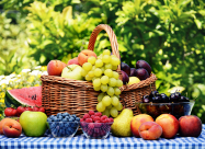 Лунный календарь огородника и садовода на август 2021 года