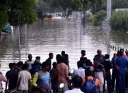 Сильна повінь в Індії зносить все на своєму шляху. Відео