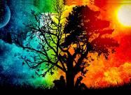 День осеннего равноденствия: традиции и обычаи
