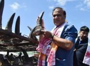 В Индии сожгли 2500 редких рогов носорогов
