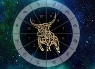 Лучшие качества тельцов - самый преданный знак зодиака