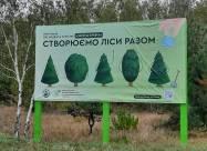 В Запорожской области заложили новую дубовую рощу