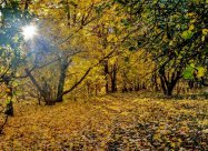 Именины 21 октября: у кого День ангела и что нельзя делать