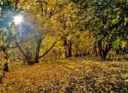 Іменини 21 жовтня: у кого День ангела і що не можна робити