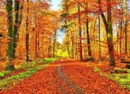 Именины 25 октября: у кого День ангела и что нельзя делать