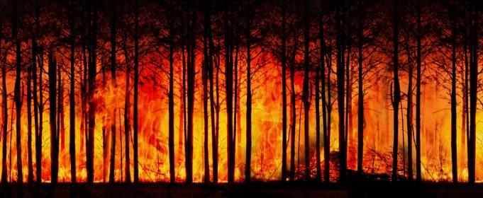 Глобальные последствия от пожаров