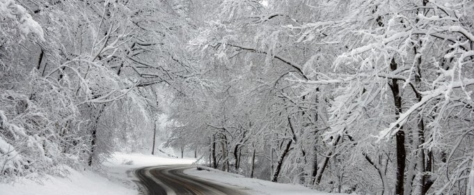 Śnieżyce nawiedziły Turcję [wideo]
