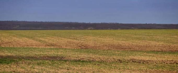 Из-за засухи в Одесской области запрещают поливать огороды артезианской водой