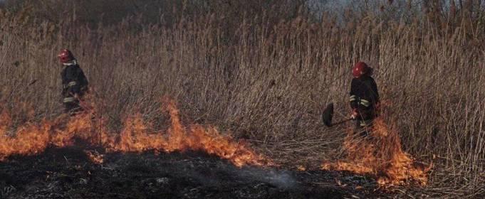 В 10 областях Украины объявили чрезвычайную пожарную опасность