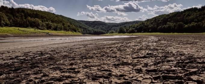 В Чехии зафиксировали сильнейшую за последние 500 лет засуху