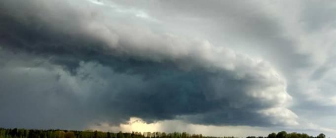 Погода в Украине на среду, 6 мая