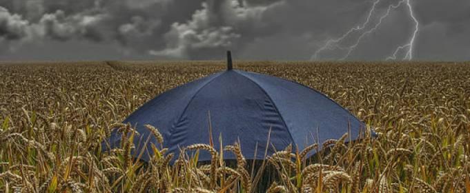 Майские дожди в Украине улучшат ситуацию с урожаем