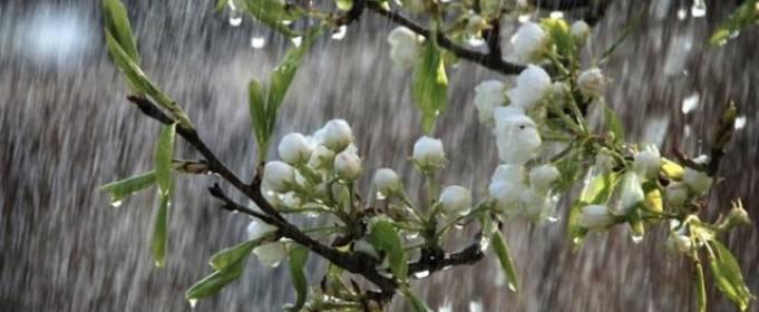 Погода в Украине на четверг, 7 мая