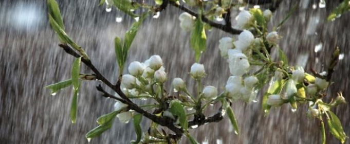 Погода в Україні на четвер, 7 травня