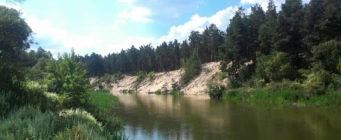 Як посуха в Україні впливає на річки та питну воду
