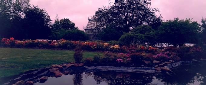 Киевский ботанический сад ждет посетителей
