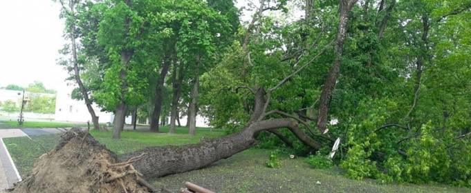 Над Черниговом пронесся ураган